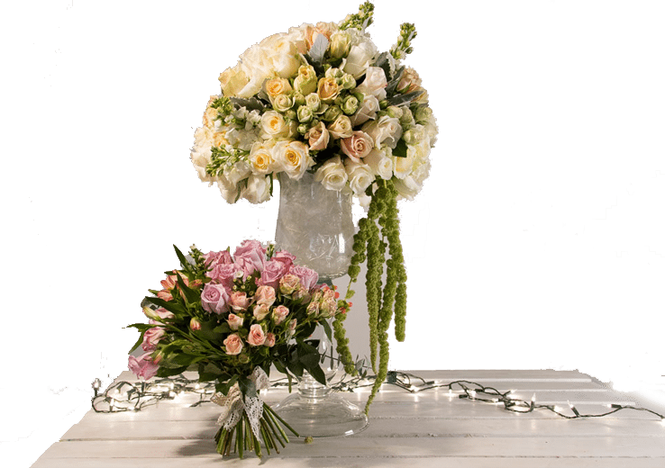 Click Flowers Usa Buy Flowers Online Direct From Ecuadorian Farms